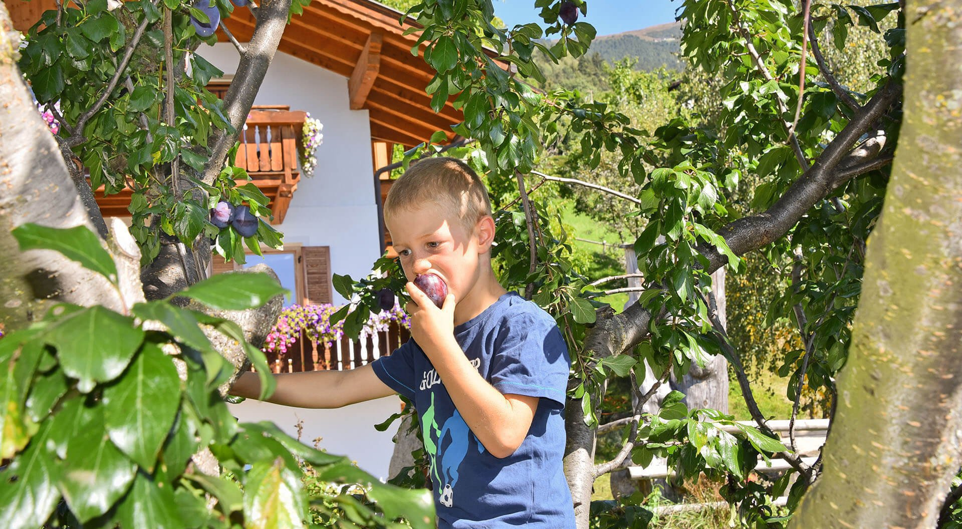 Kircherhof | Abwechslungsreicher Kinderurlaub auf dem Bauernhof in Brixen/Südtirol